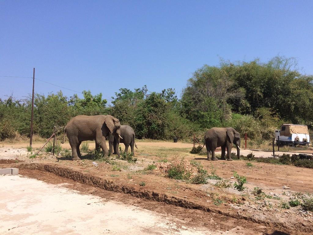 Zimbabwe View2