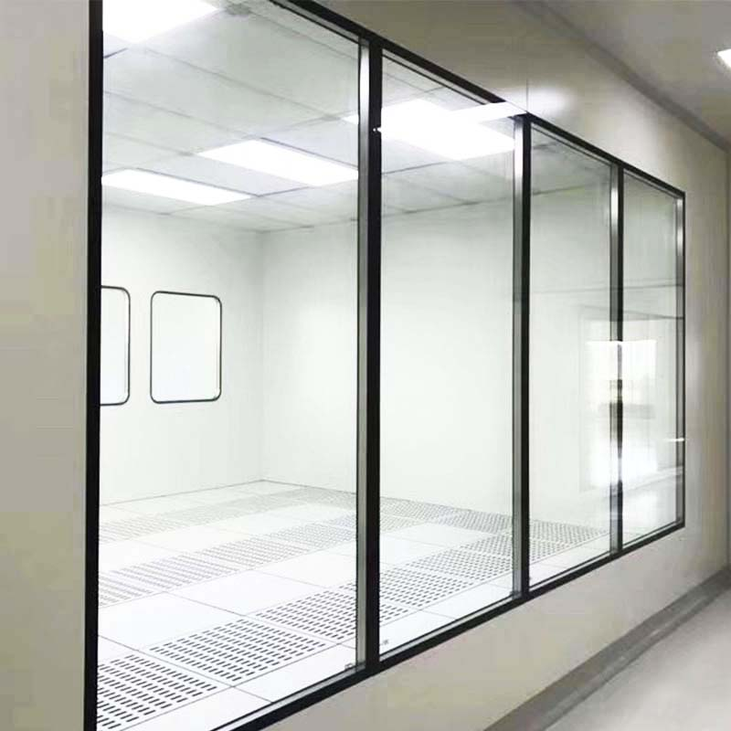 Customized Professional Clean Room Window